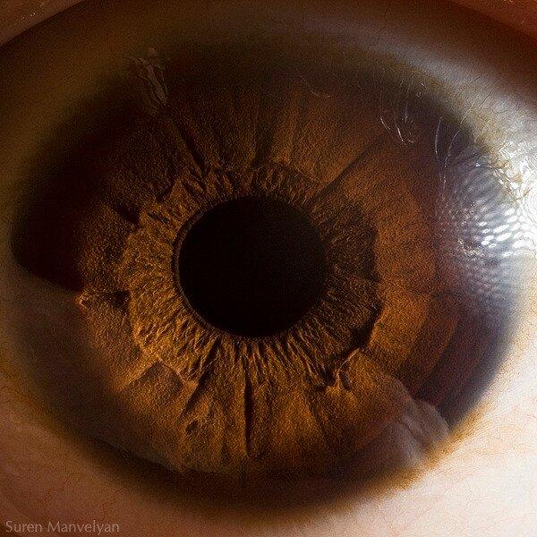 Ваши красивые глаза (20 фото)