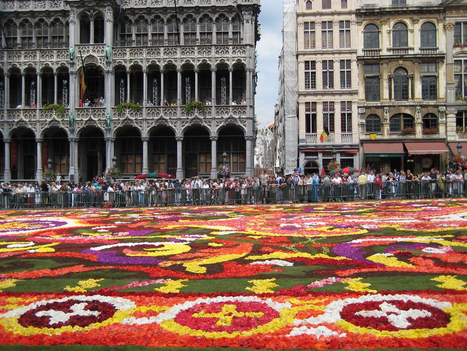 Цветочный ковер Брюсселя. Виртуальное путешествие