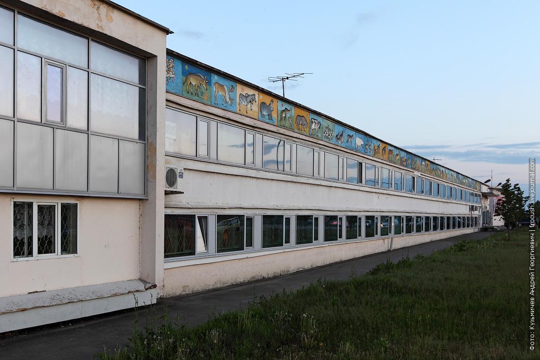 цирк с обратной стороны Казань