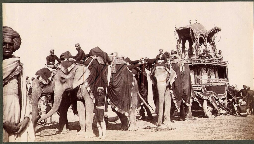 1877 Chief's State Elephant Carriage at the Review of Native Chiefs' Retinues.jpg
