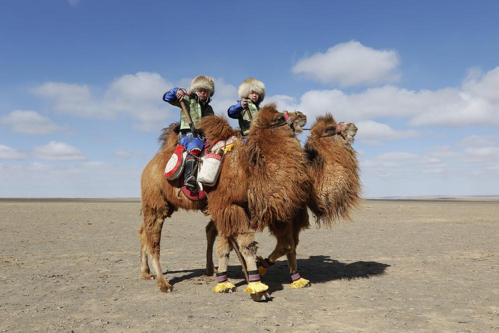 охрана завораживающие фото казахов живущих в монголии учетом эпидемиологической