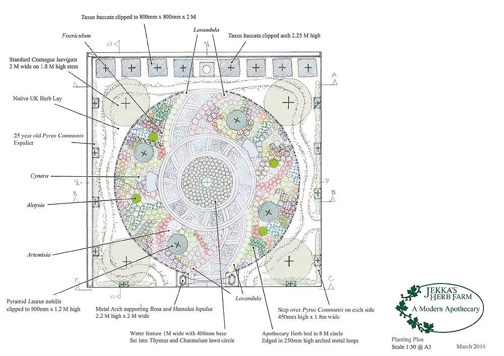 A modern Apothecary Garden (4).jpg