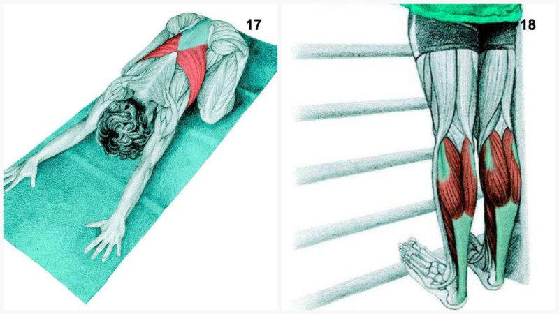 18. Растяжка на мышцы в области икроножной мышцы и голеностопа.19. Растяжка на задние мышцы ног,