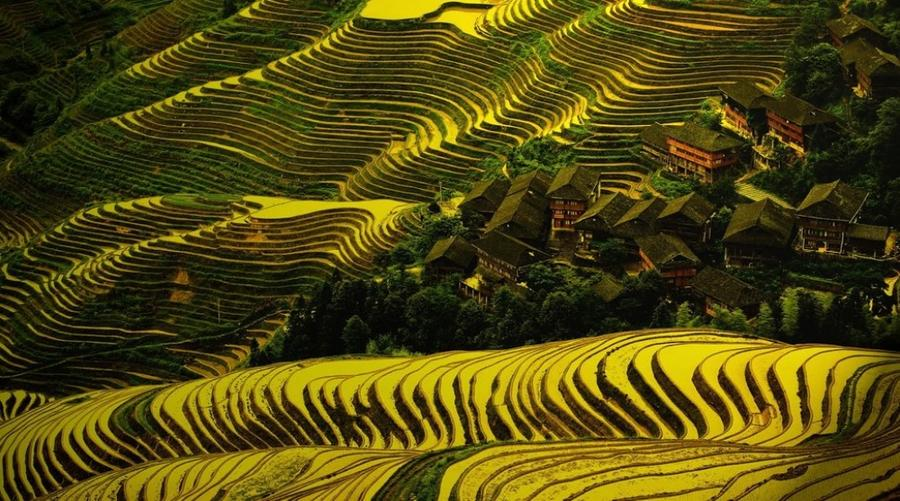 3. Дажай, Китай