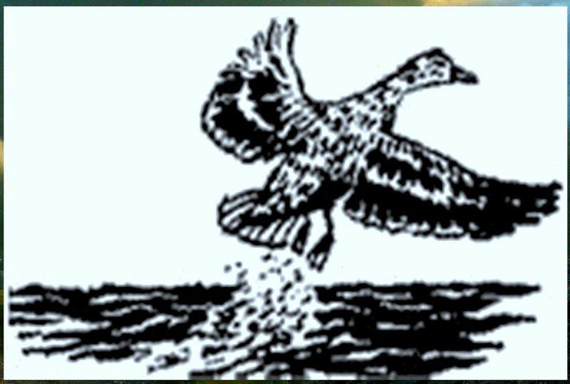 Иллюстрация к книге В.К.Арсеньева Дерсу Узала (4).jpg