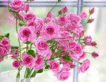 Розовые розы ручной работы из полимерной глины