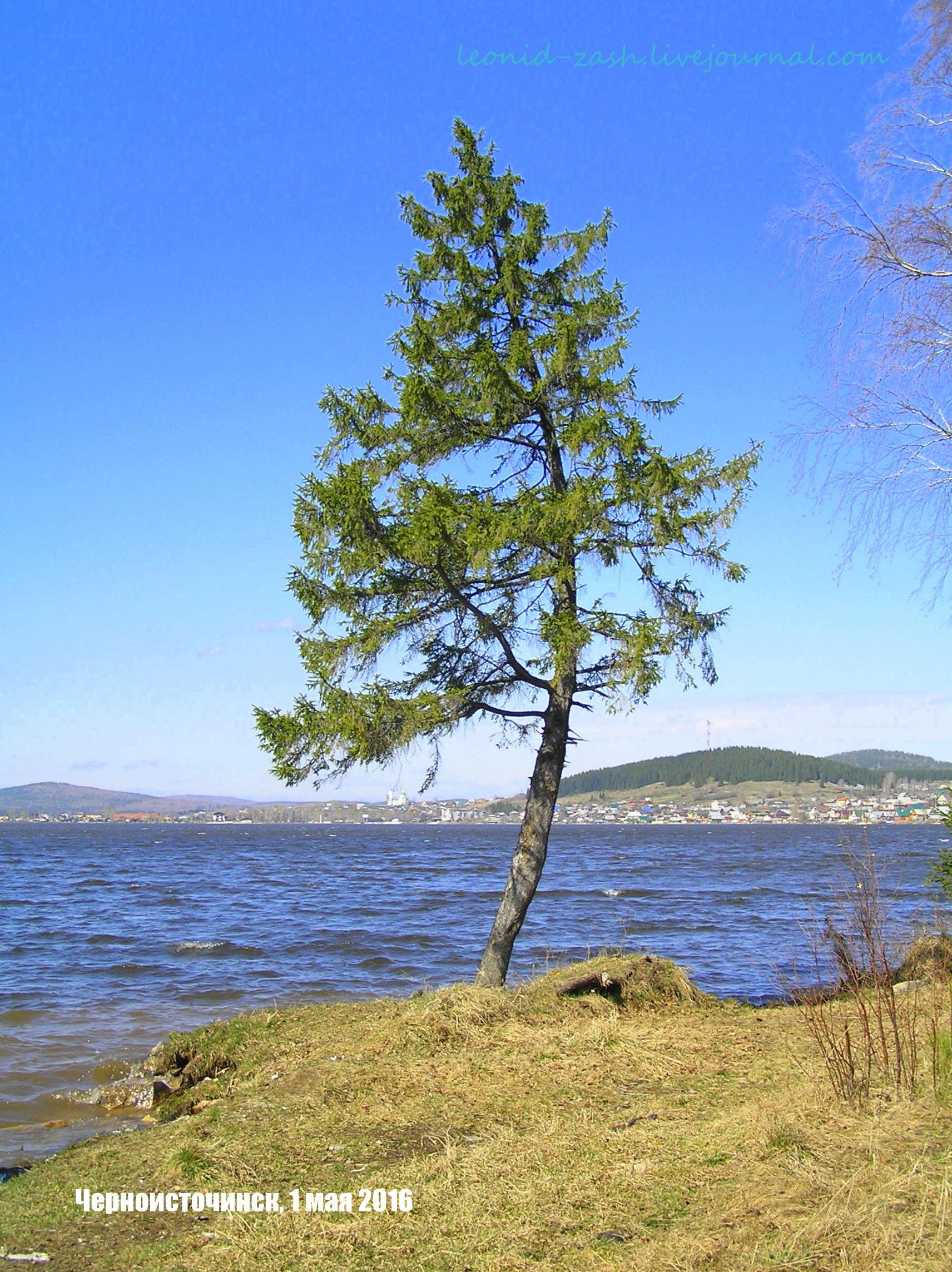 Черная Черноисточинск Тагил 183.JPG
