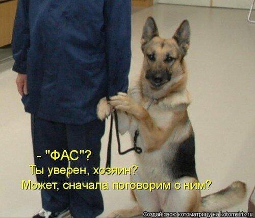 http://img-fotki.yandex.ru/get/5401/c-olia2009.d/0_3a910_2dd70dd8_L.jpg