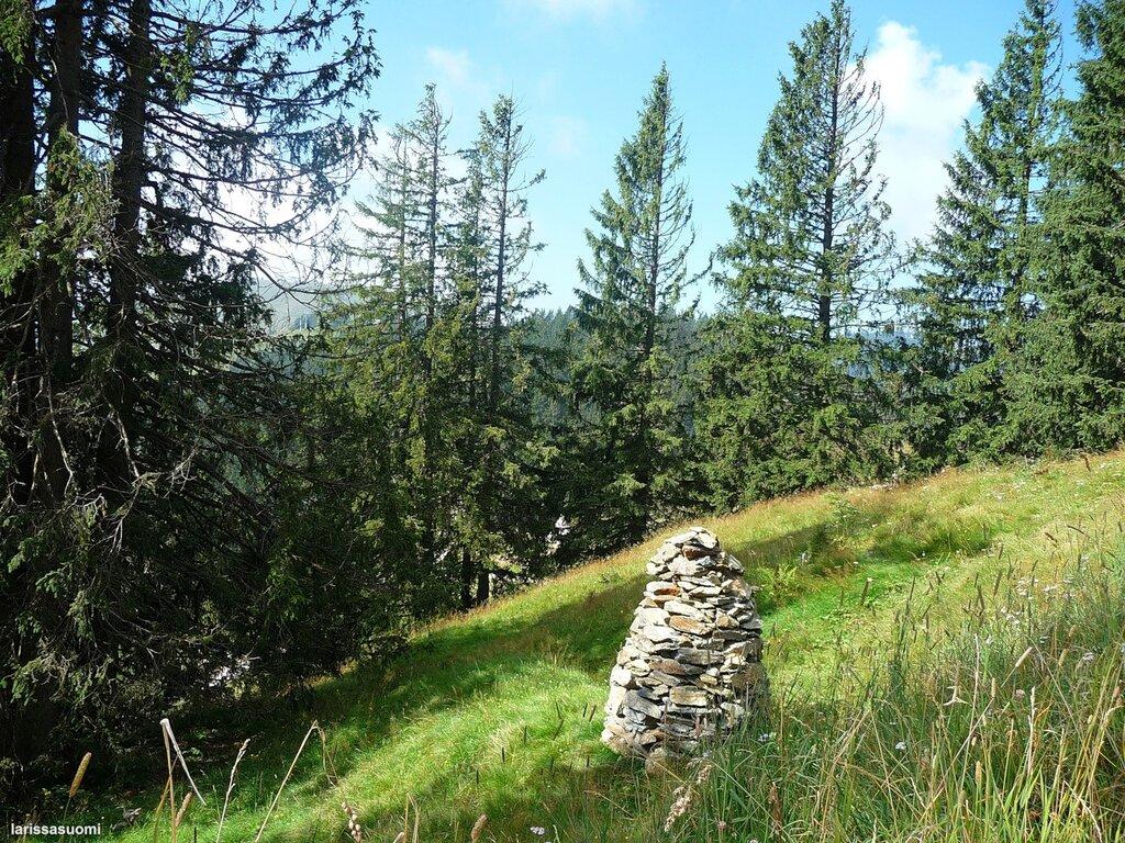 Каменные статуи. 1500 метров. Альпы.