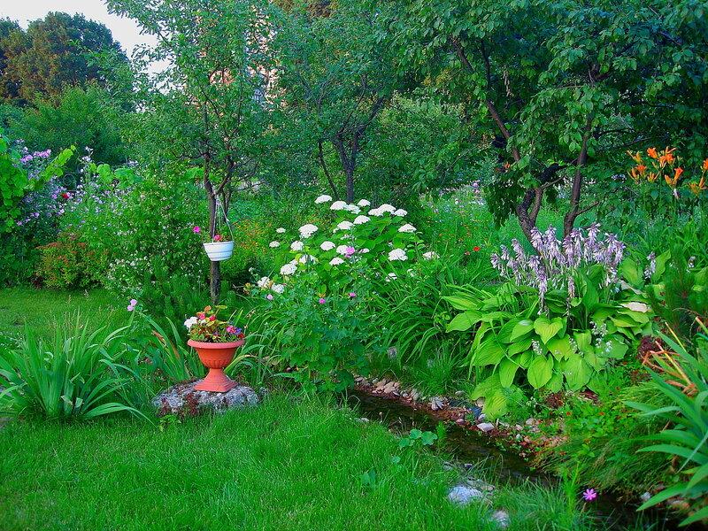 Лето,с.Остров, подворье,райский садик