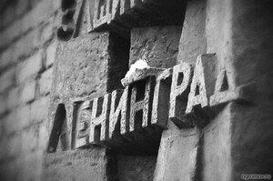 Ленинград (Ленинград, монохром, памятник)