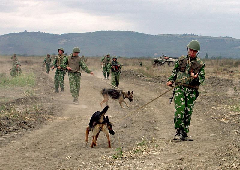 Более 1,5 тыс га Чечни и Ингушетии разминируют к 2015 году