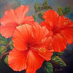 Coral-calypso.jpg