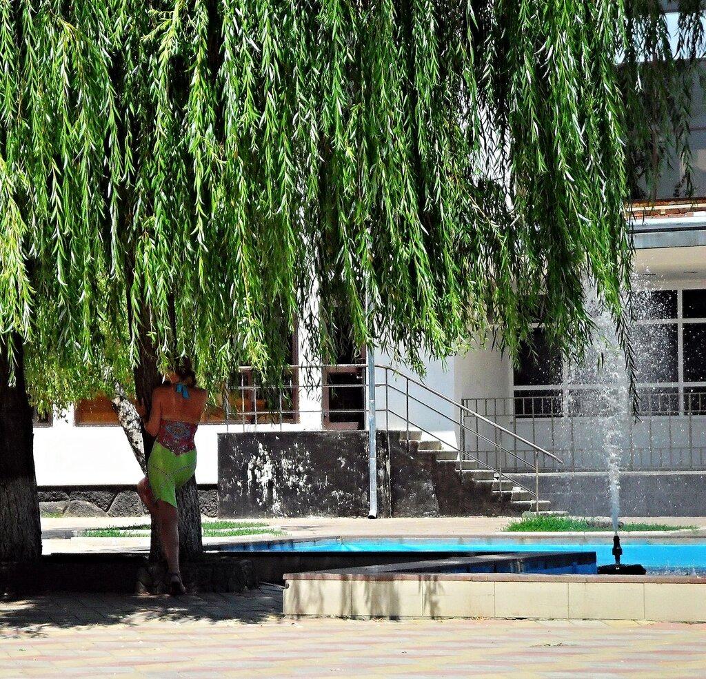 Ива у фонтана