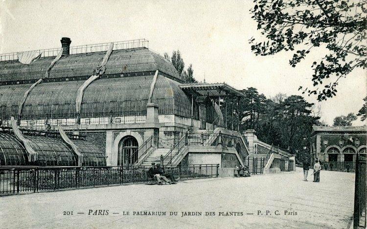 Сад растений (Париж)