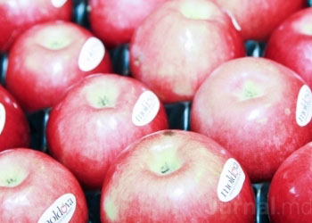 ЕС намерен удвоить импорт молдавских яблок, слив, винограда и помидор