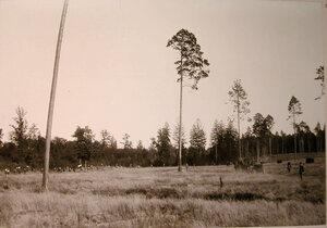 Охотники,егеря на опушке леса перед началом охоты.