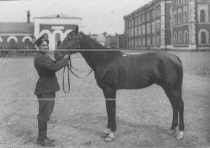 Казак с конем у казарм полка.