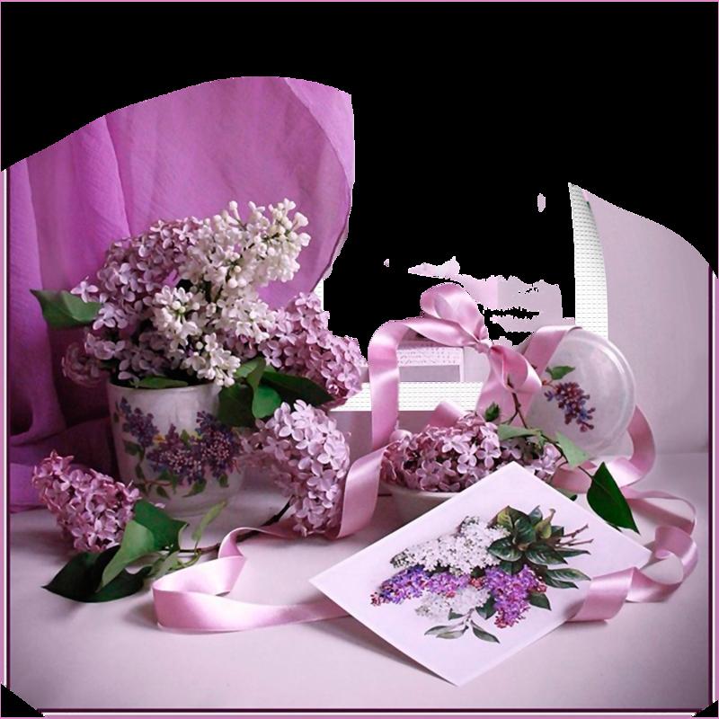 нежно сиреневая открытка букет ягодиц квадрицепсов, нем