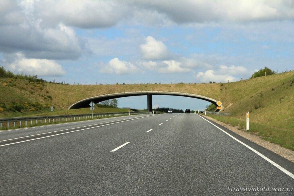 Дорога в Леголенд