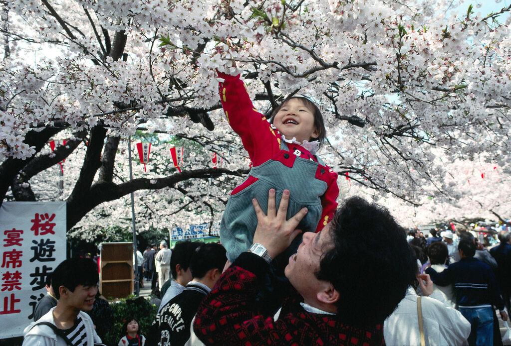 Японские девушки фото обнажённых 9 фотография