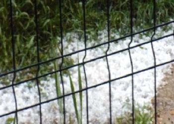 Дождь с градом повредил сельхоз культуры в селе Петрешть