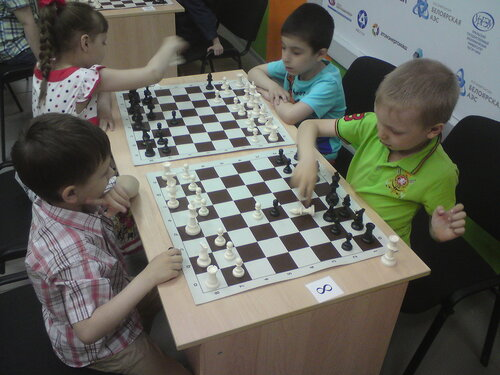шахматы 22 турниры