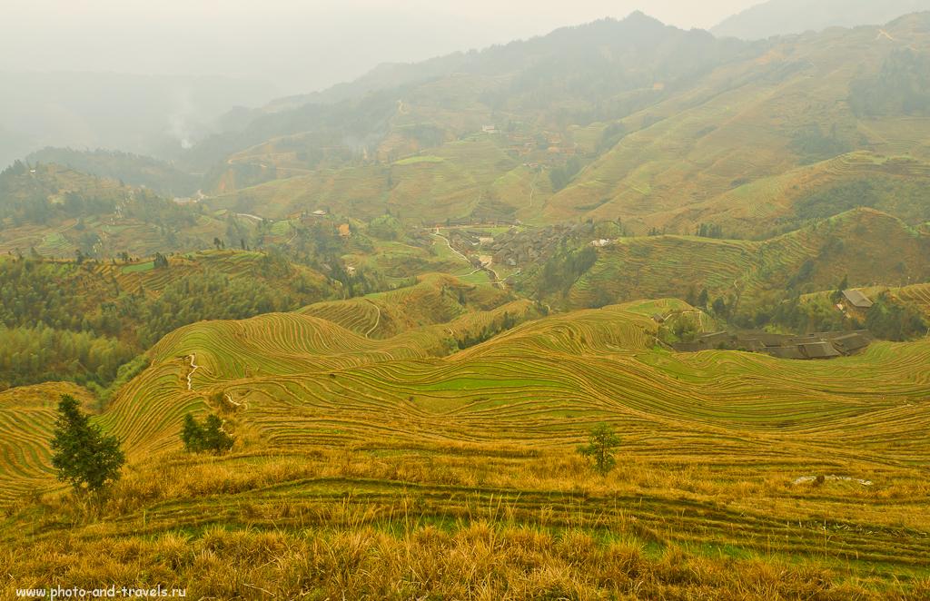 Фото 7. Красота на рисовых террасах Лонгшэнь в Китае