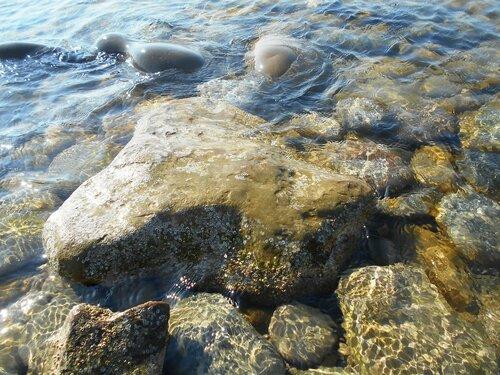 Прозрачность мартовской спокойной воды Азовского моря ... DSCN1300.JPG
