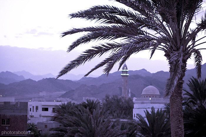 Приехать в Дахаб