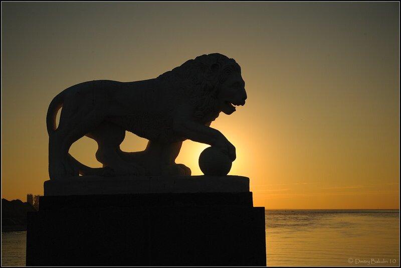 закатный лев