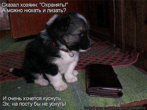 http://img-fotki.yandex.ru/get/5403/c-olia2009.e/0_3a91e_6f92d004_L.jpg