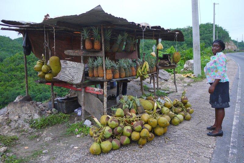 Pineapple at Faith's Pen