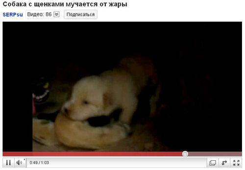 http://img-fotki.yandex.ru/get/5403/serpsu.6/0_3be7c_5590c7cc_L.jpg