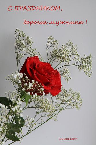 Открытка к 23 февраля открытки фото рисунки картинки поздравления