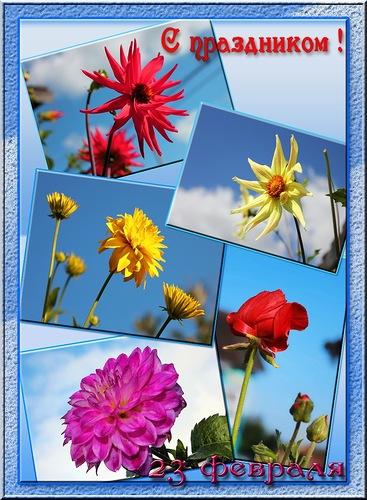 С праздником! 23 февраля открытки фото рисунки картинки поздравления