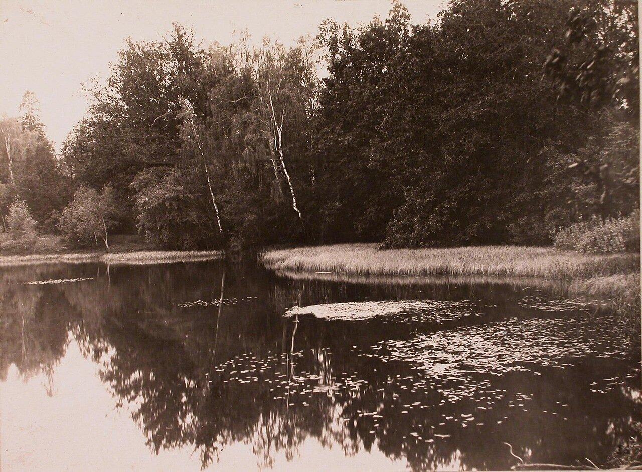 Вид части пруда в усадьбе Шереметевых