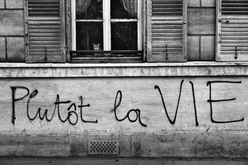 1968, май. PLUTOT LA VIE