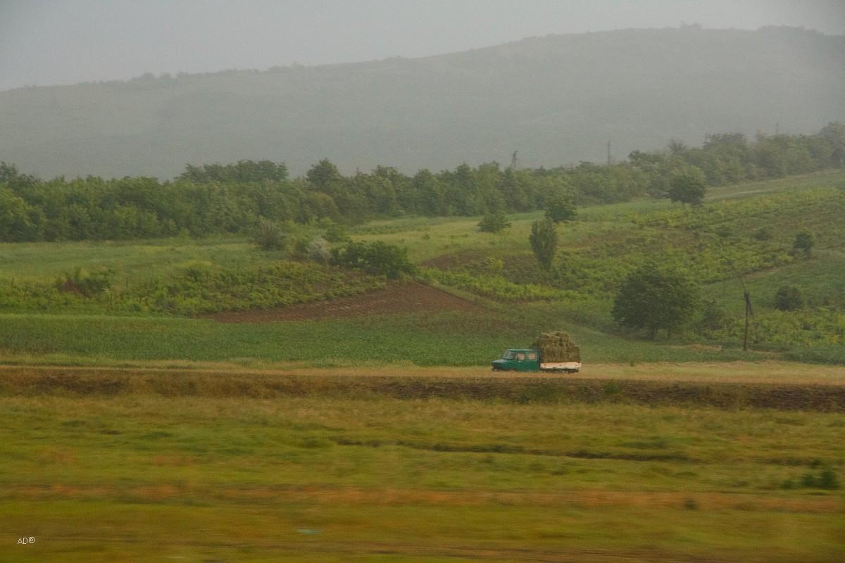Молдова 2010-06-13