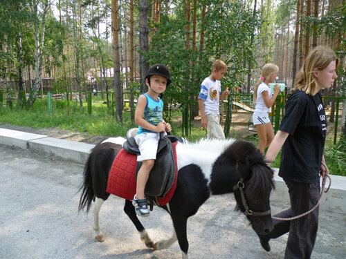 http://img-fotki.yandex.ru/get/5404/bianickla.9/0_4c455_3f6a8a36_L.jpg