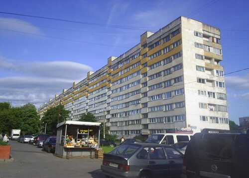 ул. Пионерстроя 6