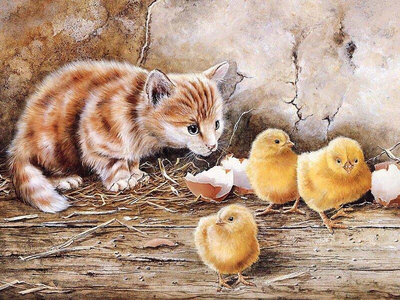 Скачать обои домашние животные, котенок и цыплята, Shirley Deaville 800x600.