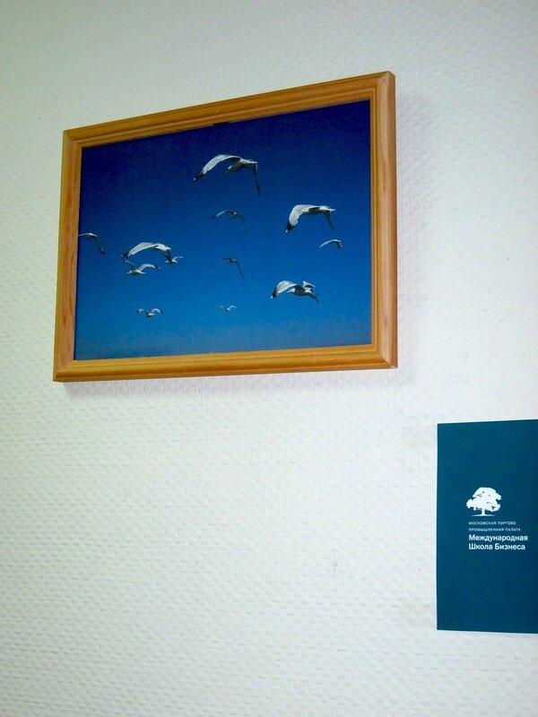 """Фото экспозиции """"Яркие краски Хорватии"""""""