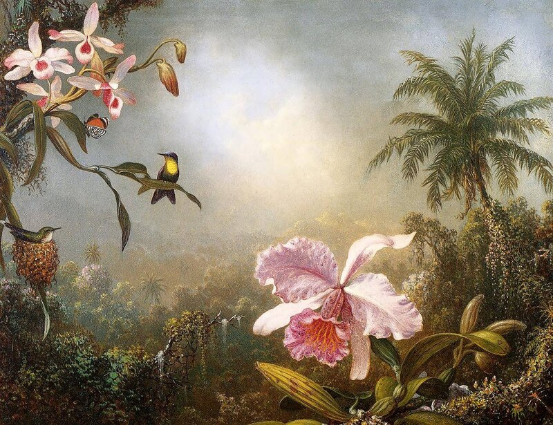 Martin Johnson Heade (2).jpg