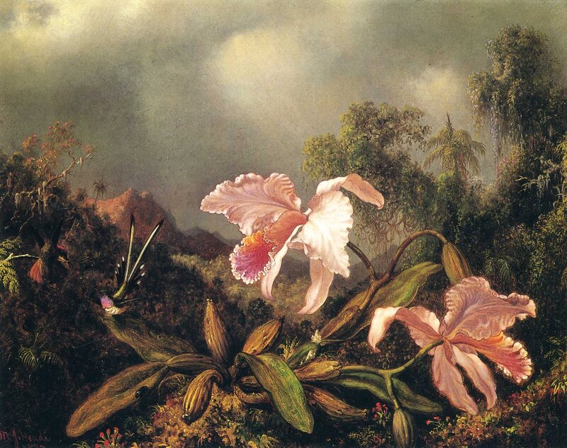 Martin Johnson Heade (9).jpg