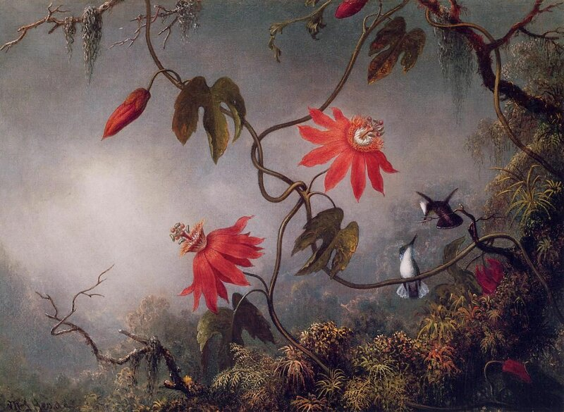 Martin Johnson Heade (10).jpg