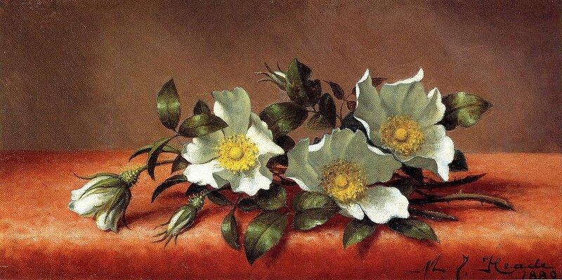 Если только цветок разбудить... Martin Johnson Heade