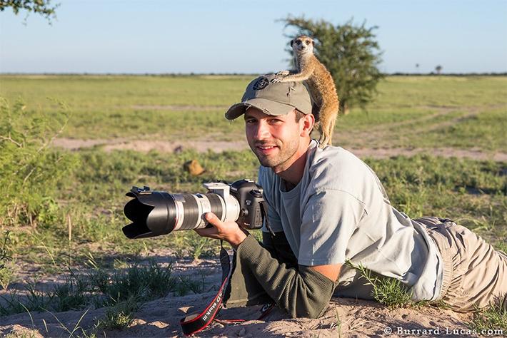 Фото «Необычная дружба сурикатов с фотографом»
