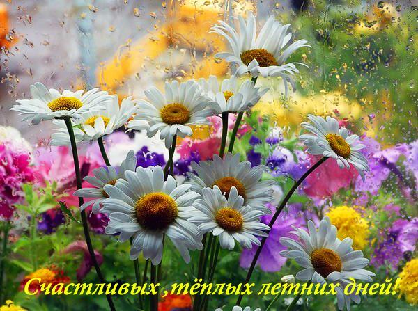 Счастливых, теплых летних дней! открытки фото рисунки картинки поздравления