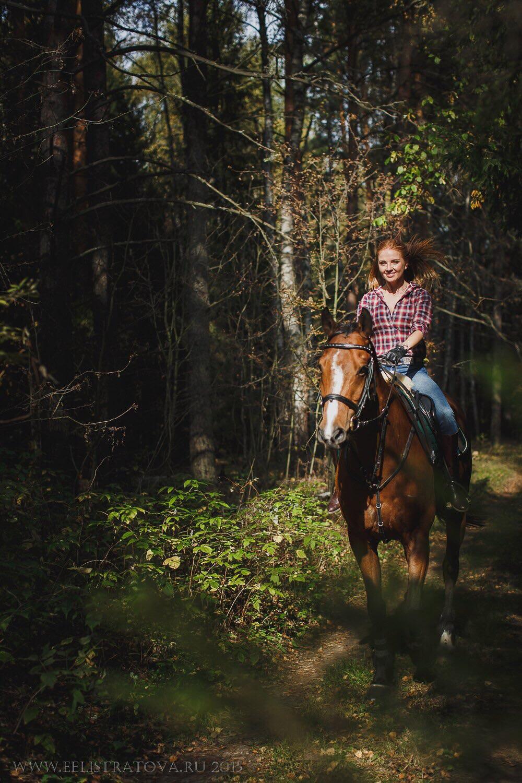 Чем полезно катание на лошадях? (1 фото)